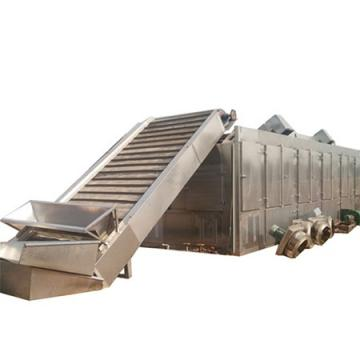 Electricity Continuous Operation Process Moisture Conveyor Dryer for Sale