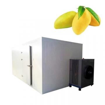 Belt Walnut Dryer Industrial Food Drying Machine
